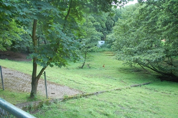 Zoo Neunkirchen 2012 079
