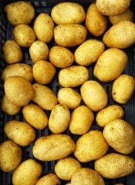 Potage de pommes de terre