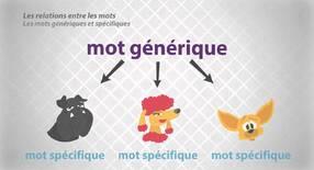 Mots génériques / mots particuliers