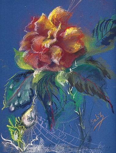 rosedefi640.jpg
