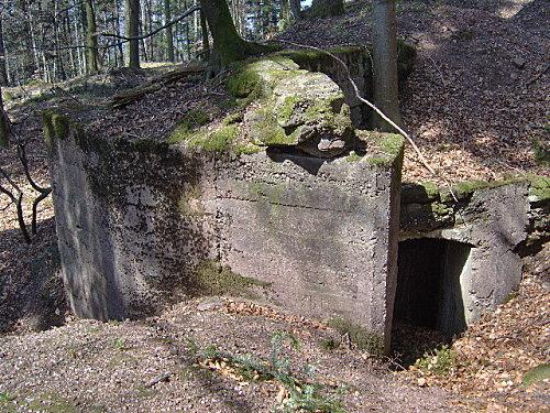roche pierre piquee neuvevoie derzognier 054