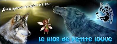 Le loup apprivoisé rêve toujours de la forêt : 24 mai 2016