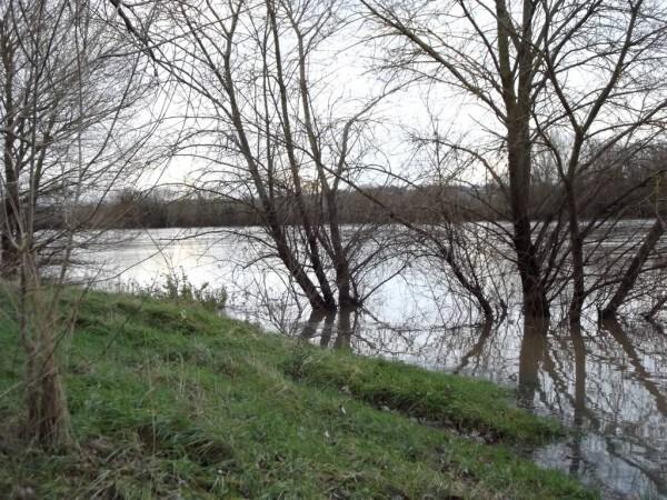 Loire-10.jpg