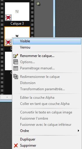Tutoriel: Comment mettre un GIF dans e-anim?