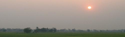 Jeff de Pangkhan, l'homme des rizières ; le blog a 3 ans !