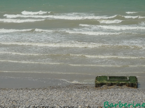 Du vent , des vagues !