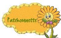 Patchounette Fleurs jaune marguerite