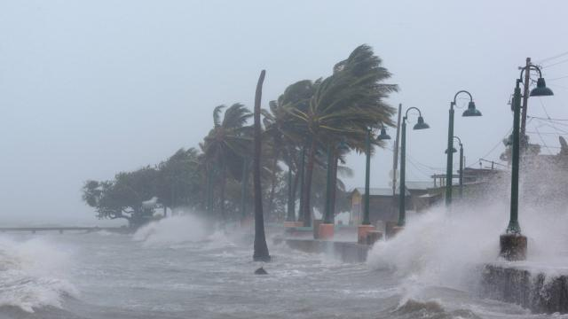 Irma a tout emporté  !!!