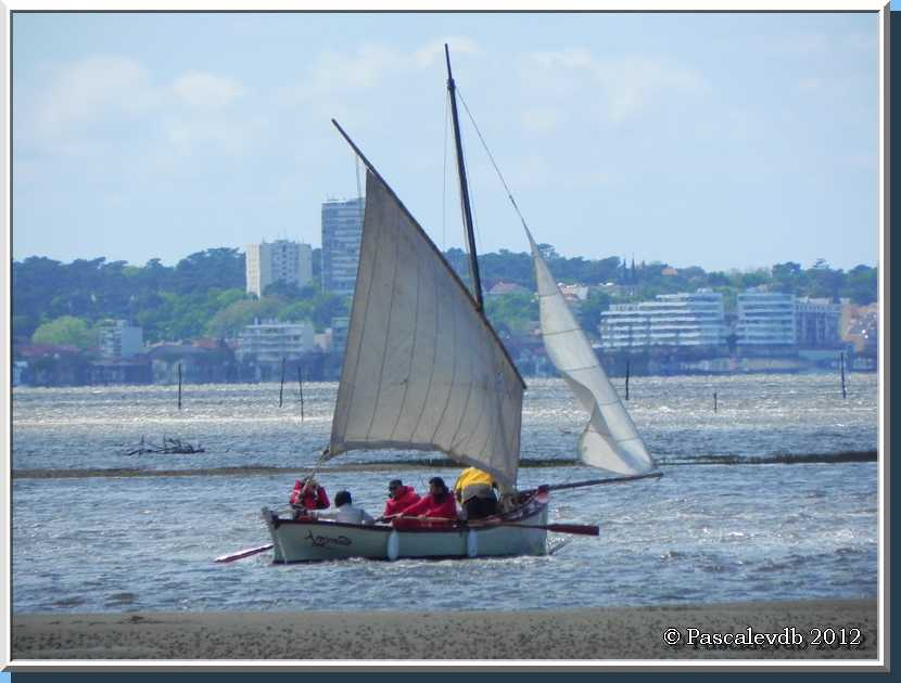 Gujan Mestras - Le port du Canal - 2/4
