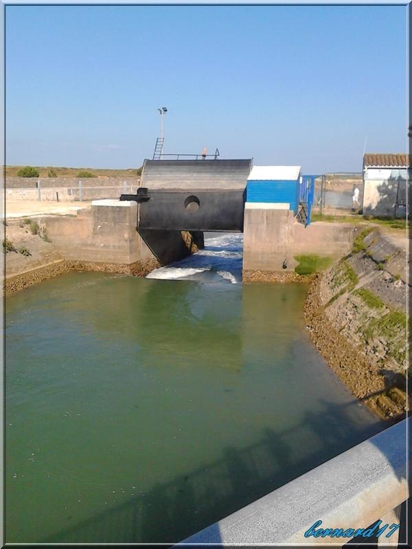 B3-Le Port du Douhet