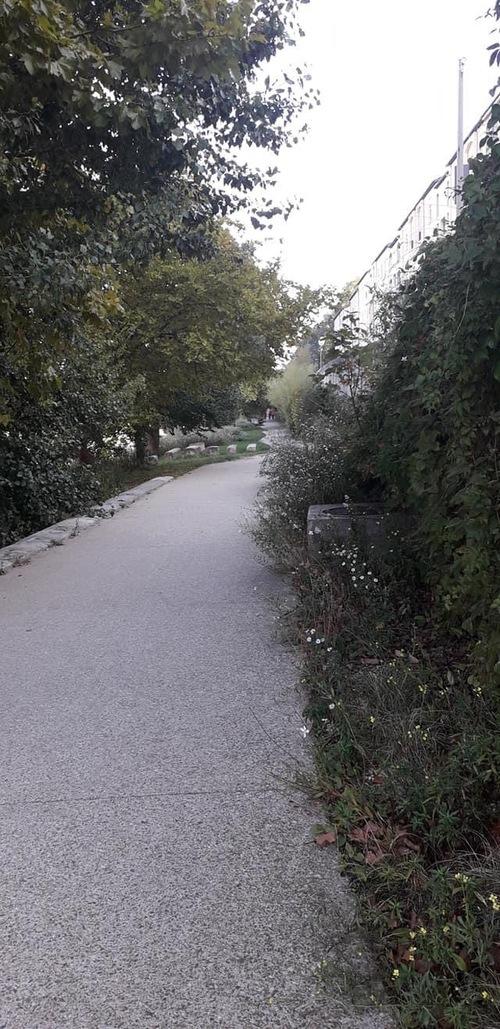 Course à pied octobre rose