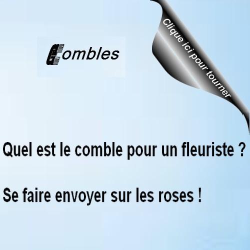 humour Combles 7