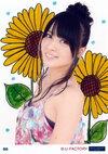 Galerie °C-ute Cutie LIVE 2013 summer ~Queen Of OTODAMA~