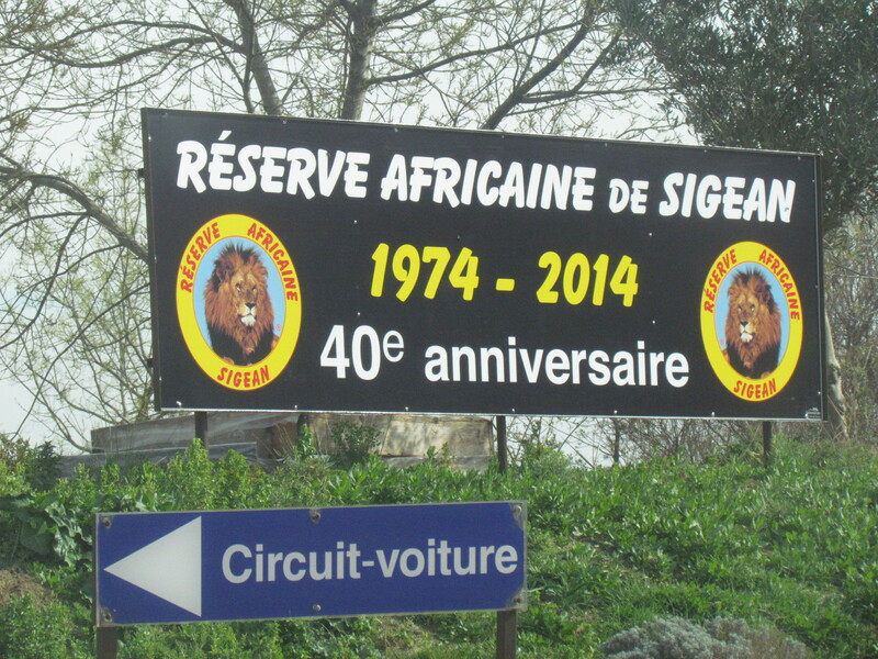 RESERVE AFRICAINE DE SIGEAN .