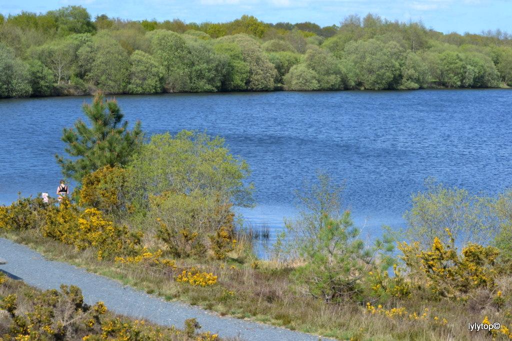 Le lac de Bruyère à Millières (6)