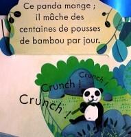 Coucou Au zoo 3