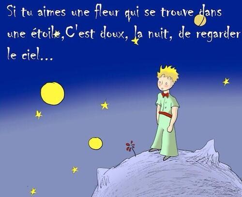 Le Petit Prince Il était Une Fois La Nature