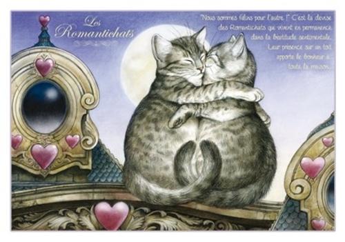 Les Chats enchantés de Séverine Pineaux