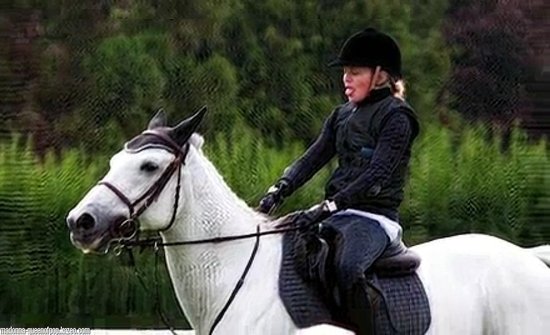 horse07