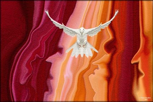 La colombe de l'île de Pâques