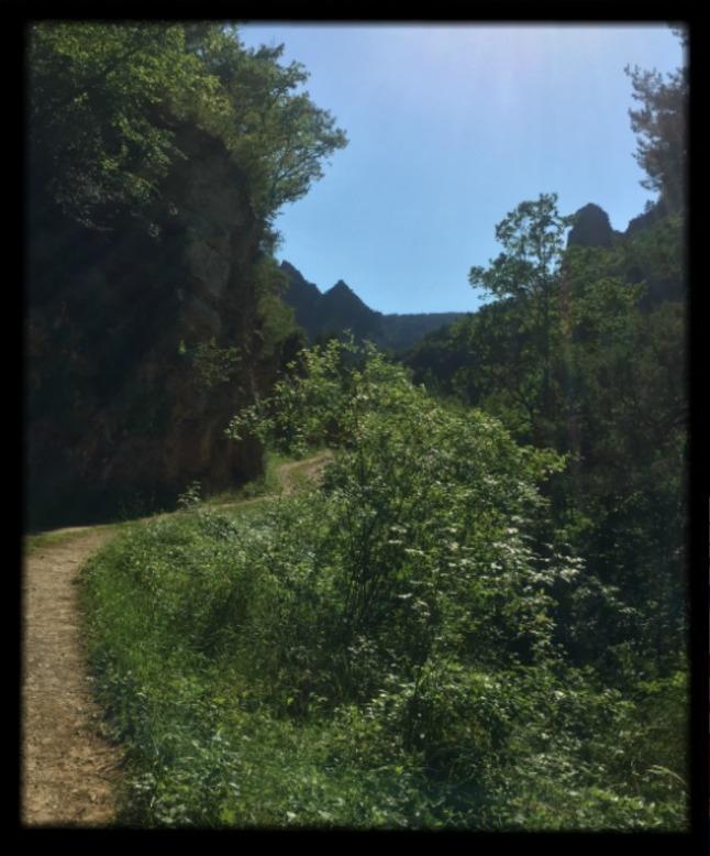 Balade dans le Tarn