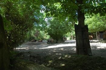 Zoo Duisburg 2012 724