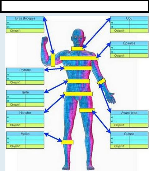 nutrition musculation prise de masse pdf