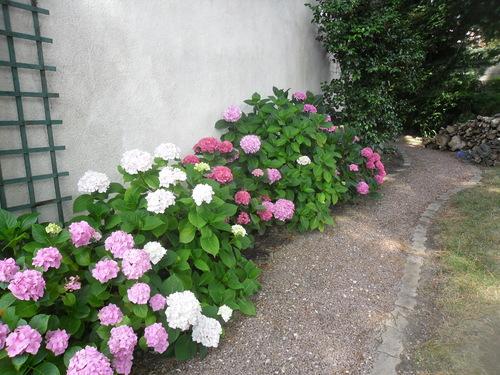 Le jardin de ma mère !