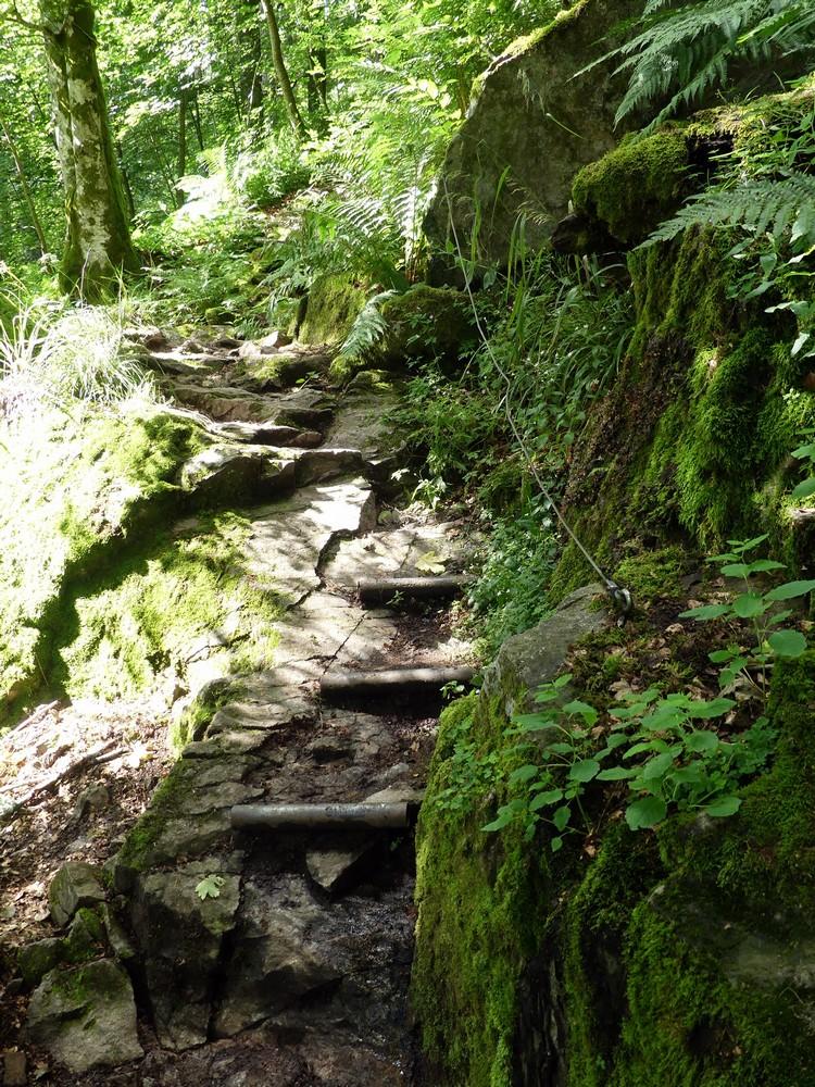 Sentier de descente