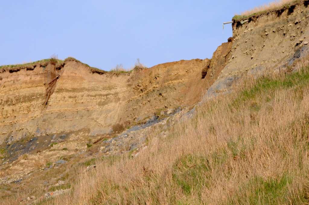 Wimereux ...Suite de la balade dans les dunes...