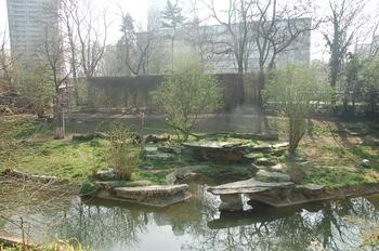 zoo cologne d50 2012 067