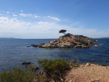 L'îlot du Jardin