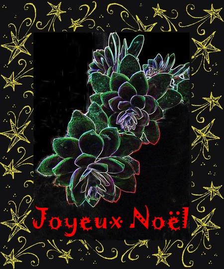 Joyeux Noël 2014 à tous mes lecteurs...