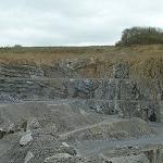 ERBRAY (Dept44) Carrière de la Ferronnière Fossiles