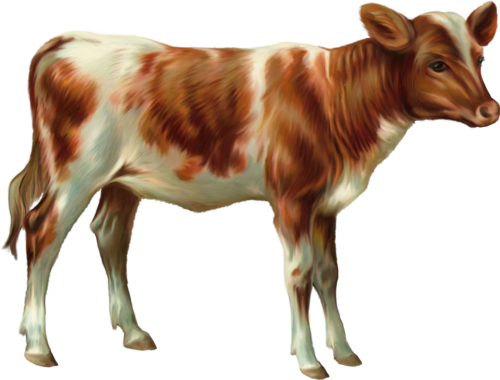 Tubes animaux de la fermes en png