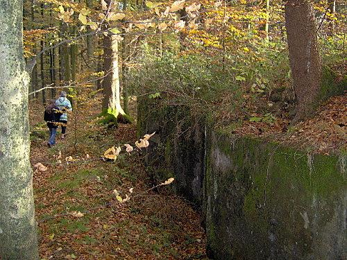 le donon,2007-10-28 030