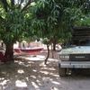 Burkina Sindou au campement