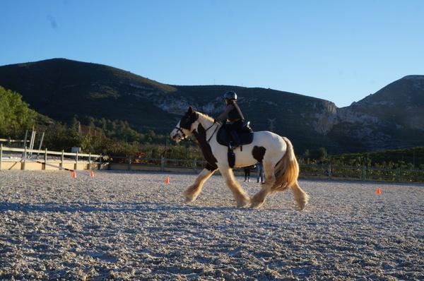 Vall de Cavall à Gata de Gorgos