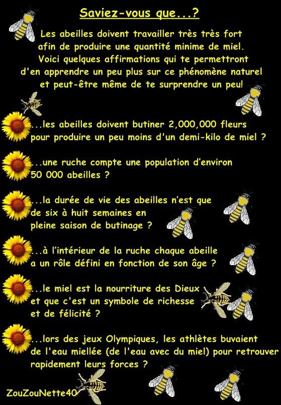 APICULTURE-abeille--N-6--.jpg