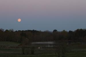 La première pleine Lune du printemps
