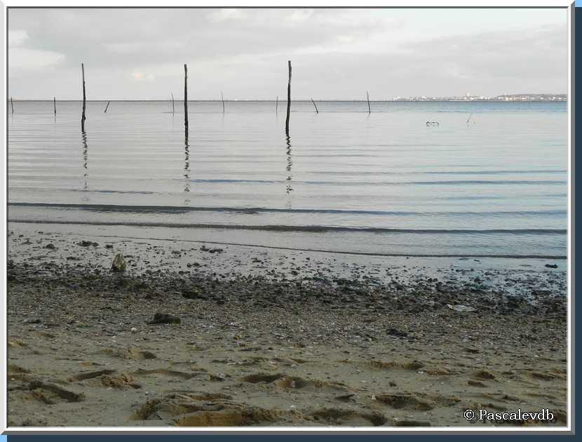 Sur une plage du Canon