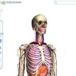 body-browser1-150x150.jpg