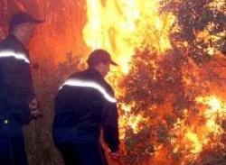 - النيران تواصل تقدمها باتجاه المناطق المأهولة والسكان يوجهون نداء استغاثة للسلطات