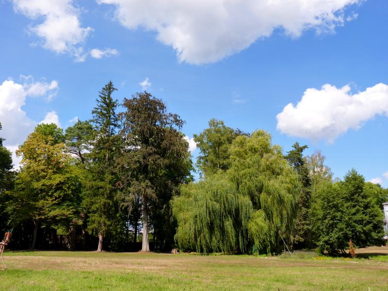 Chateau Walk Haguenau