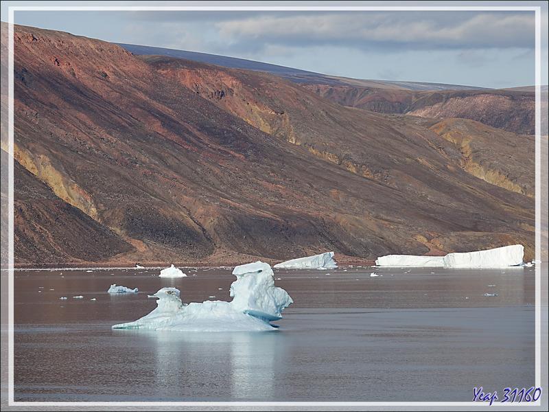 Un drôle de personnage givré dérive dans le Fjord Bowdoin - Qaanaaq - Groenland