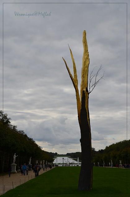 Penone l'arbre foudroyé 1