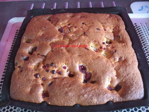 Gâteau 4X9 aux fruits rouges