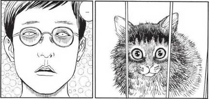 Le Journal des chats by Junji Ito
