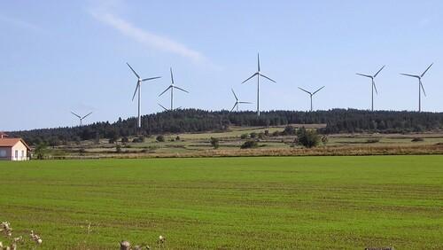 Les éoliennes dans le sillage du Coucou du haïku, suite des amis