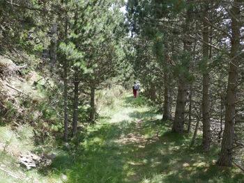 Le chemin horizontal